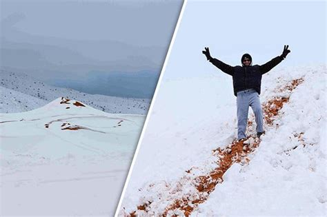 snow in desert snow in sahara desert as photographer captures biggest
