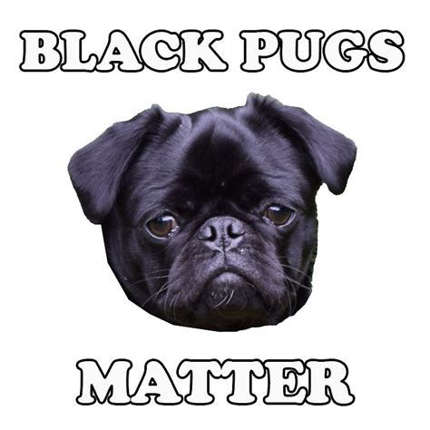 pug sticker quot quot black pugs matter quot sticker quot stickers by barneythepug redbubble