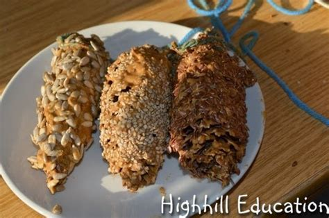 highhill homeschool what type of seed do birds like best