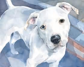 pit paint new watercolor portraits pitbulls david scheirer