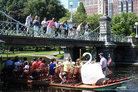 swan boats boston public garden boston public garden robert gillis new england photography