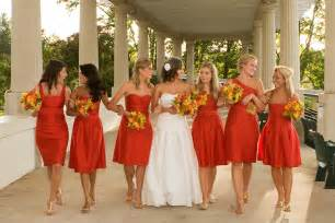 different color wedding dresses bridesmaid dresses different styles same colour overlay