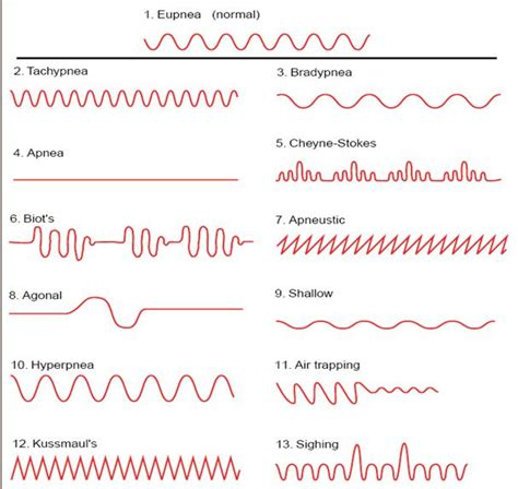 breathing pattern in heart failure respiratory physiotherapy patterns of respiration