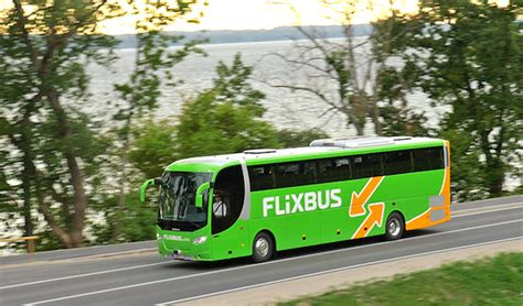 autobus candela roma flixbus nuovi collegamenti nel foggiano da candela verso