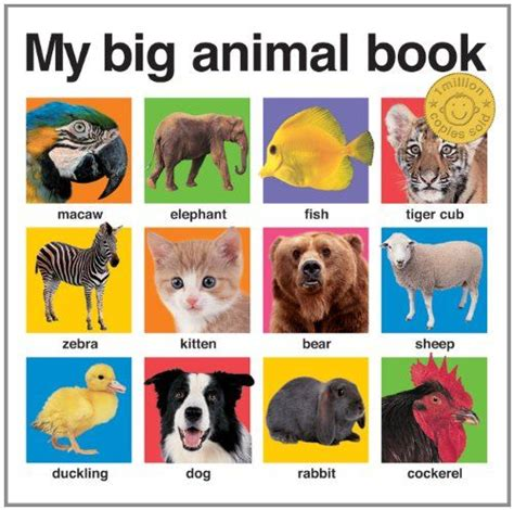 picture books about pets 1000 images about science nature animals on