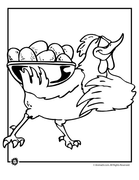 chicken egg coloring page free hen life cycle coloring pages