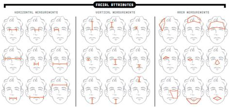 pattern recognition using generalized portrait method what caricatures can teach us about facial recognition wired