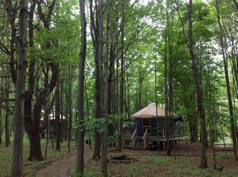 Tree House Yurts, Glamping   Harmony Hill Retreat Lodging