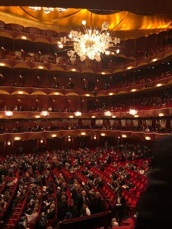 view  parterre box picture   metropolitan opera