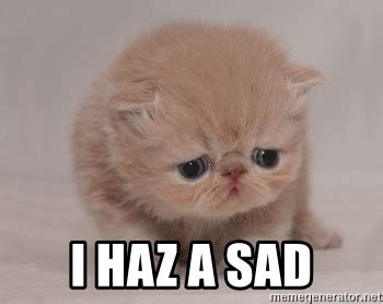 Unhappy Meme - i haz a sad super sad cat meme generator