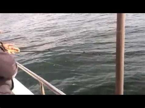 the flamingo fishing boat in brooklyn sheepshead bay brooklyn fishing videos reelreports