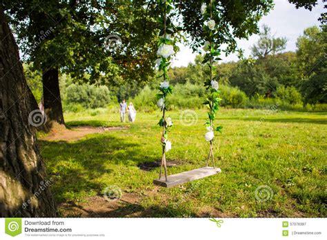 vintage tree swing swing on a tree stock photo image 57076387