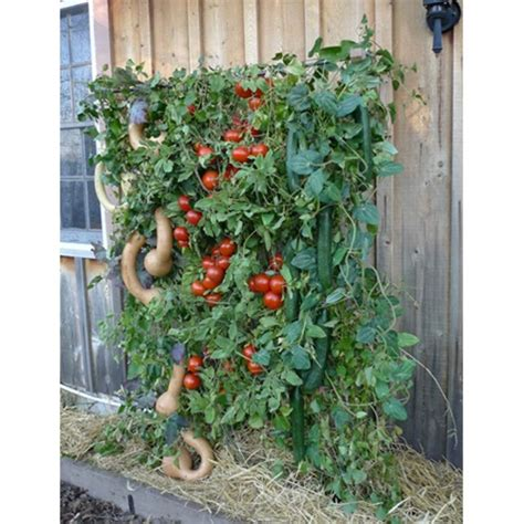 ultimate vegetable trellis skyscraper garden free shipping