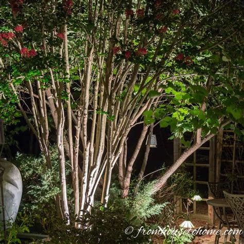 landscape lighting effects 8 dramatic landscape lighting effects and how to use them