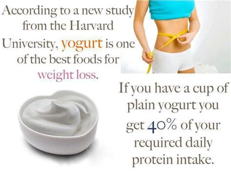 weight loss yogurt yogurt diet for todaynfl7v