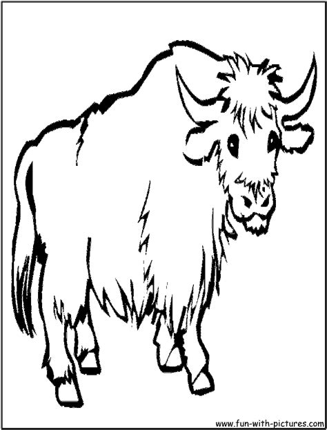 coloring page yak pin yak colouring page on