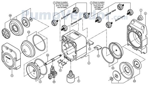shurflo wiring diagram wiring and parts diagram