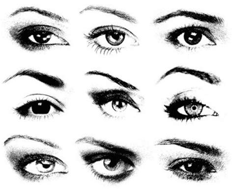 stylish eyebrows shapes for black women eyebrow shapes to suit your face lifecrust