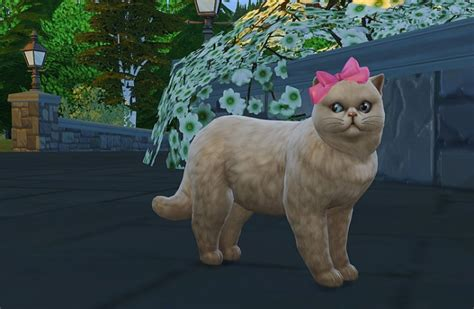 bow set at studio k creation 187 sims 4 updates bow 187 sims 4 updates 187 best ts4 cc downloads