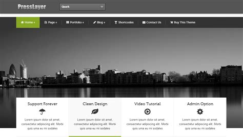 professional wordpress theme wordpress template for
