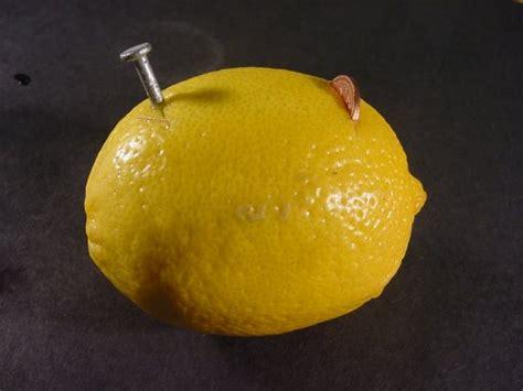 how to a lemon battery light a light bulb home chemistry lemon battery take 1
