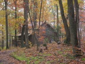 log cabin in the woods escape from it all