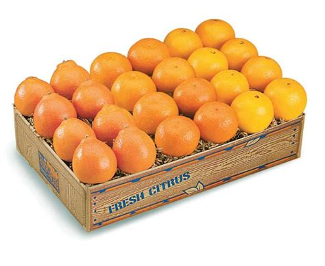 g s fruit packers g s fruit packers llc january specials