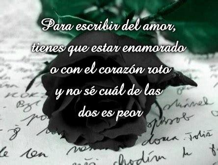 rosas negras con frases tristes para dedicar imgenes que compartir im 225 genes de rosas negras con frases tristes luto