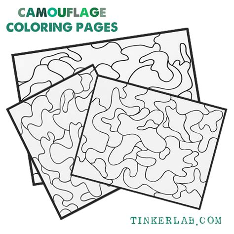 camouflaged animals coloring info pages allaboutnature com camouflage coloring pages printable tinkerlab