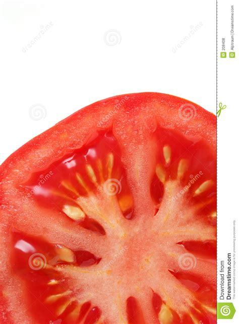 tomato cross section tomato cross section royalty free stock photos image 208408