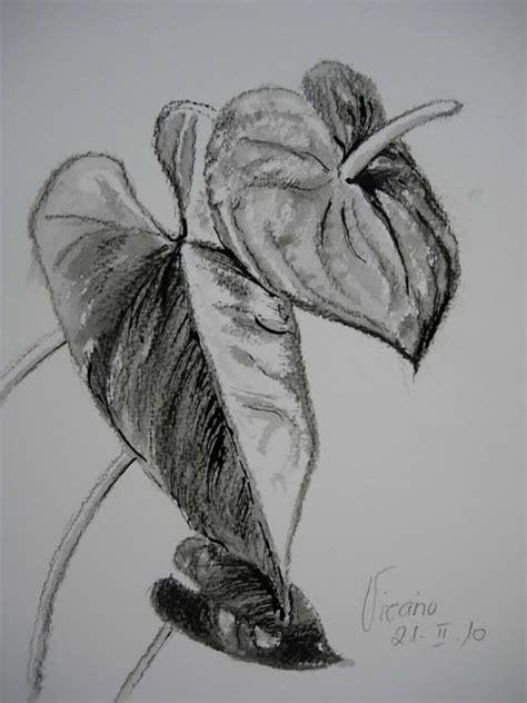 imagenes a lapiz de rosas search and google on pinterest