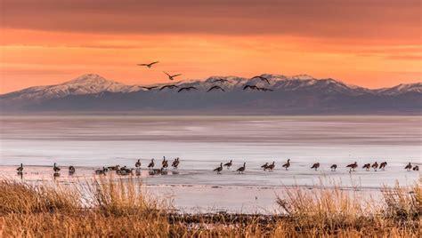 Utah Sweepstakes - 2016 utah lake photography contest utah lake official website