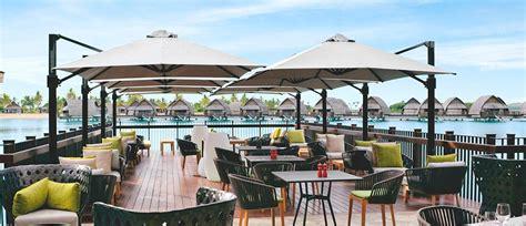 Commercial Outdoor Umbrellas: Custom Logo, Market, Patio