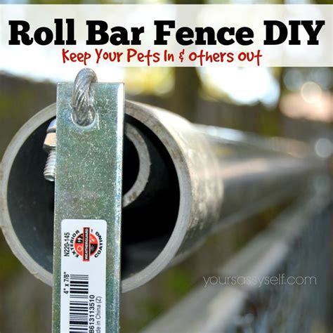 how to keep dog in yard without fence the 25 best rollers ideas on pinterest essential oil