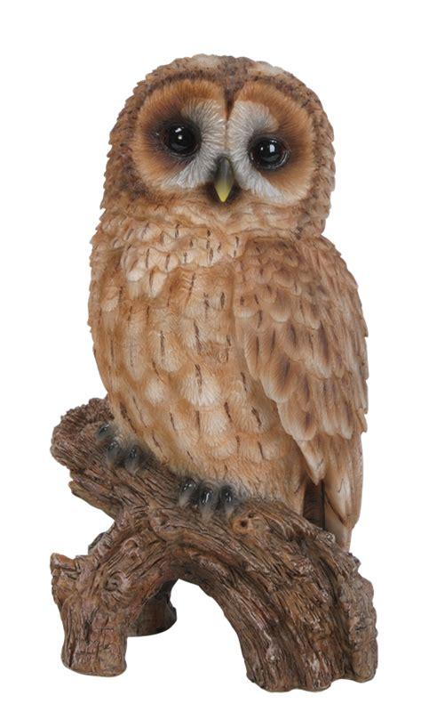 Basket Barn Little Tawny Owl Resin Garden Ornament 163 9 74