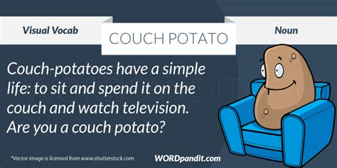couch potato meaning meaning of couch potato