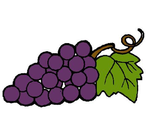 imagenes infantiles uvas dibujo de racimo pintado por uva en dibujos net el d 237 a 08