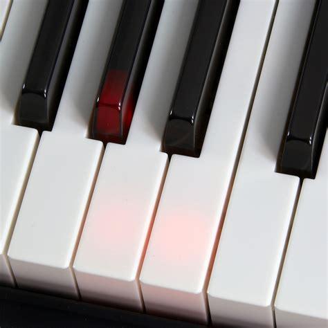 Keyboard Casio Lk 220 by Discontinued Casio Lk 220 Keylighting Keyboard At