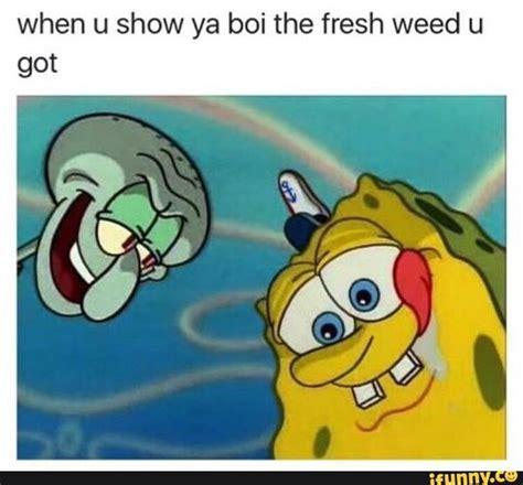 Spongebob Weed Memes - weed memes funny marijuana and pot pics high guy meme