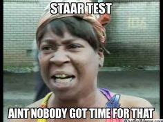 Sweet Brown Meme Generator - 1000 images about science staar test on pinterest 5th