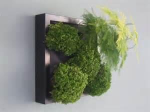 Diy Green Wall Vertical Garden Diy Vertical Gardens By Ginkgo Design Inhabitat
