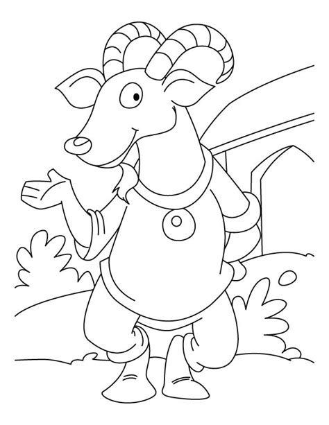 highland cow coloring page highland cow pages coloring pages