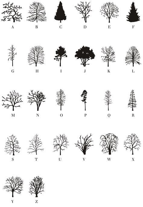 The Alphabet Trees free tree font friday nicola ginzler