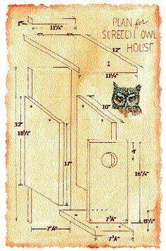 Screech Owl House Plans Bird Box Plans Woodworking Projects Plans