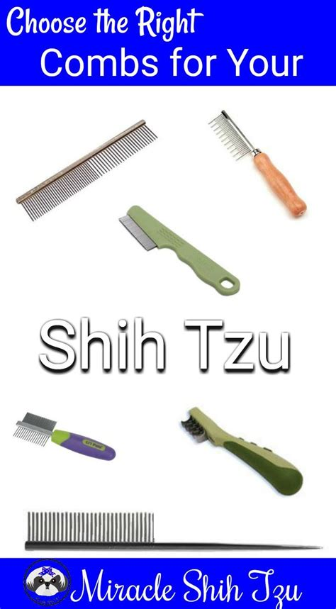 best comb for shih tzu shih tzu combs a review of the best grooming combs for your