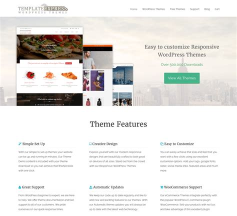template express review good wordpress themes