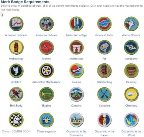 Eagle Sepatu Scout eagle scout rank page meritbadgedotorg