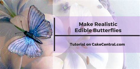 butterfly cookies butterfly cakes wafer paper tutorial how to make realistic edible butterflies for your cake