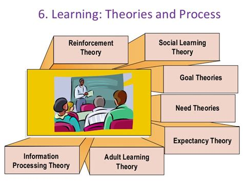 Andragogy Learning Theory Mba by Human Resource And Development