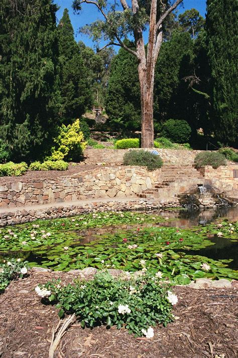 Araluen Botanical Gardens Araluen Botanical Gardens Wedding Locations Easy Weddings
